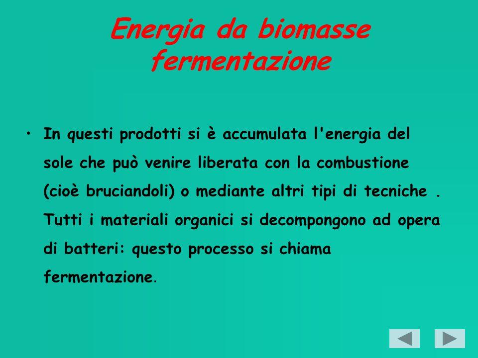 Energia da biomasse fermentazione In questi prodotti si è accumulata l energia del sole che può venire liberata con la combustione (cioè bruciandoli) o mediante altri tipi di tecniche.