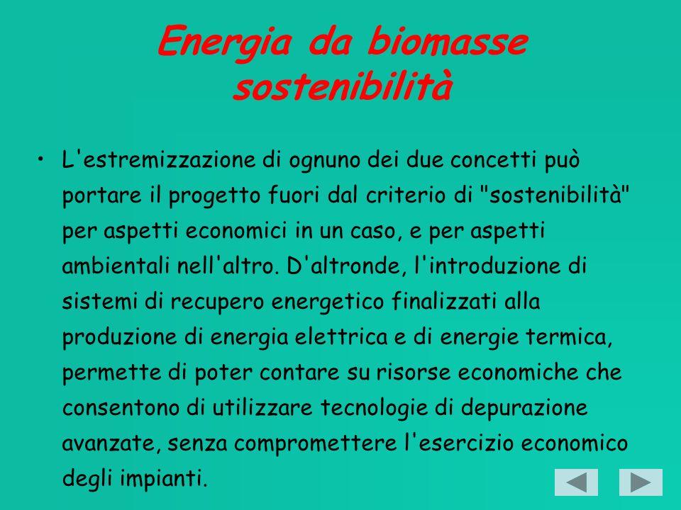 Energia da biomasse sostenibilità L estremizzazione di ognuno dei due concetti può portare il progetto fuori dal criterio di sostenibilità per aspetti economici in un caso, e per aspetti ambientali nell altro.