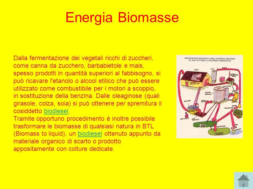 Energia Biomasse Dalla fermentazione dei vegetali ricchi di zuccheri, come canna da zucchero, barbabietole e mais, spesso prodotti in quantità superio