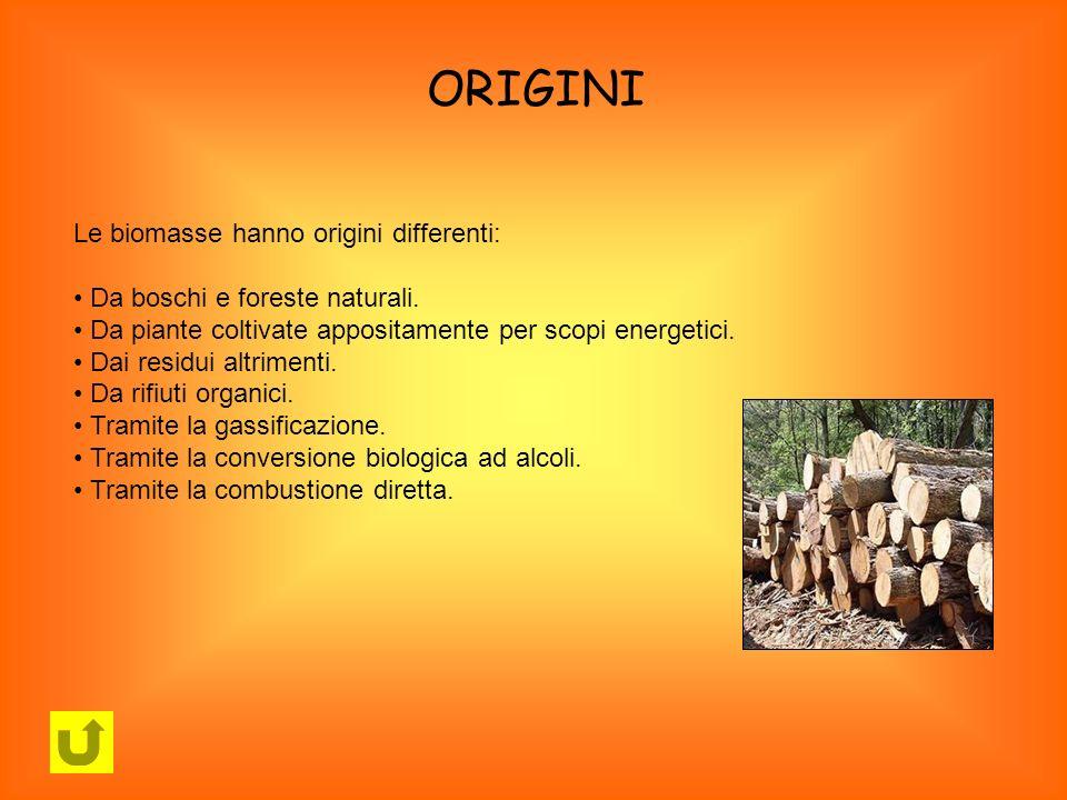Le biomasse hanno origini differenti: Da boschi e foreste naturali. Da piante coltivate appositamente per scopi energetici. Dai residui altrimenti. Da