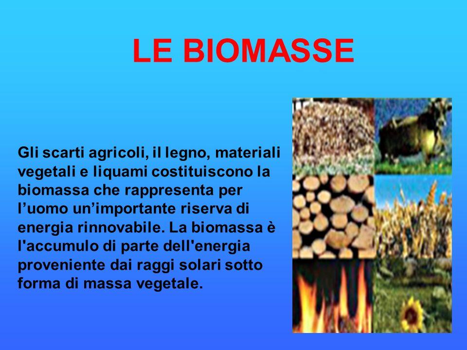 LE BIOMASSE Gli scarti agricoli, il legno, materiali vegetali e liquami costituiscono la biomassa che rappresenta per luomo unimportante riserva di en