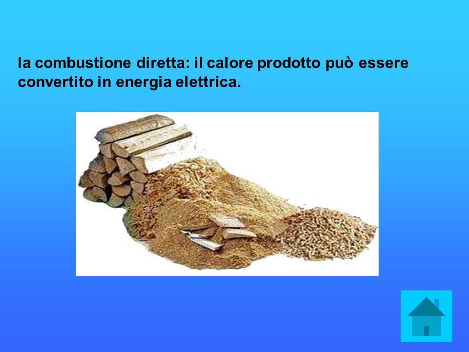 la combustione diretta: il calore prodotto può essere convertito in energia elettrica.