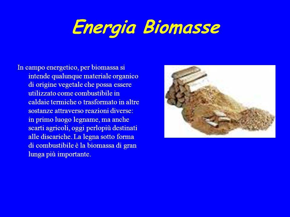 Energia Biomasse INTRODUZIONE In campo energetico, per biomassa si intende qualunque materiale organico di origine vegetale che possa essere utilizzat
