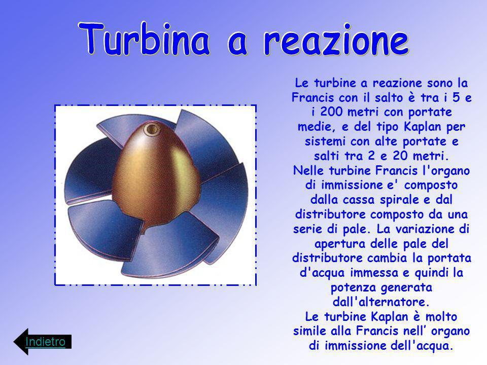 Le turbine a reazione sono la Francis con il salto è tra i 5 e i 200 metri con portate medie, e del tipo Kaplan per sistemi con alte portate e salti t