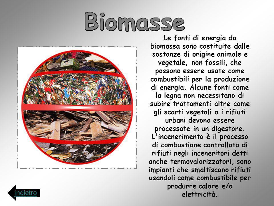 Le fonti di energia da biomassa sono costituite dalle sostanze di origine animale e vegetale, non fossili, che possono essere usate come combustibili