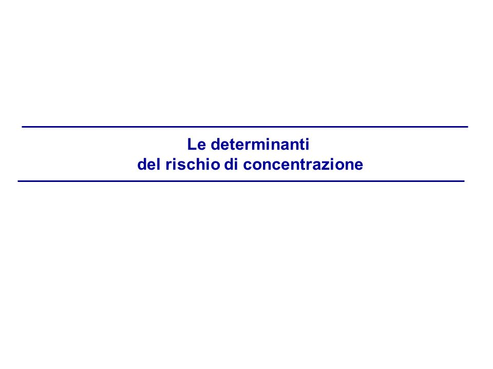 Le determinanti del rischio di concentrazione