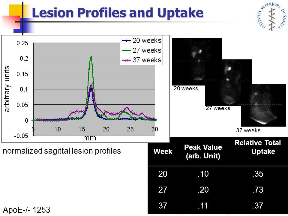 Lesion Profiles and Uptake ApoE-/- 1253 37 weeks 27 weeks 20 weeks Week Peak Value (arb. Unit) Relative Total Uptake 20.10.35 27.20.73 37.11.37 normal