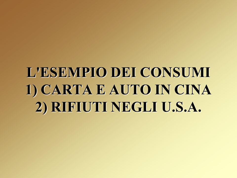 L ESEMPIO DEI CONSUMI 1) CARTA E AUTO IN CINA 2) RIFIUTI NEGLI U.S.A.