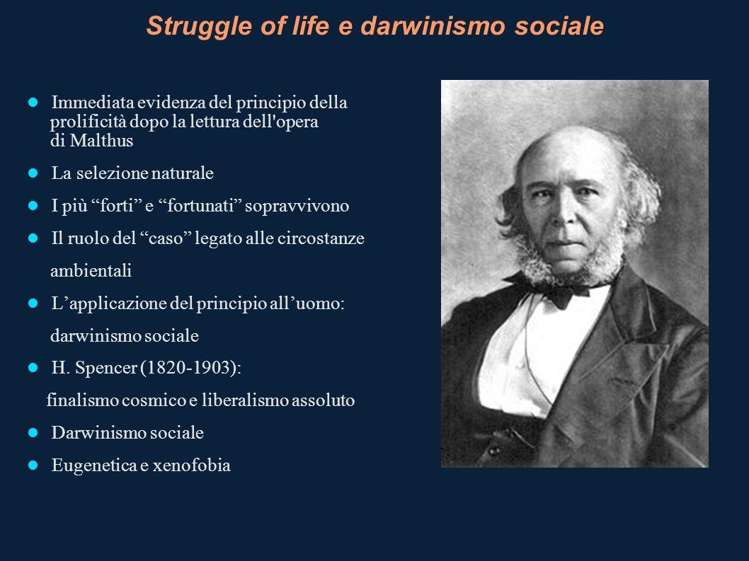 Struggle of life e darwinismo sociale Immediata evidenza del principio della prolificità dopo la lettura dell'opera di Malthus La selezione naturale I