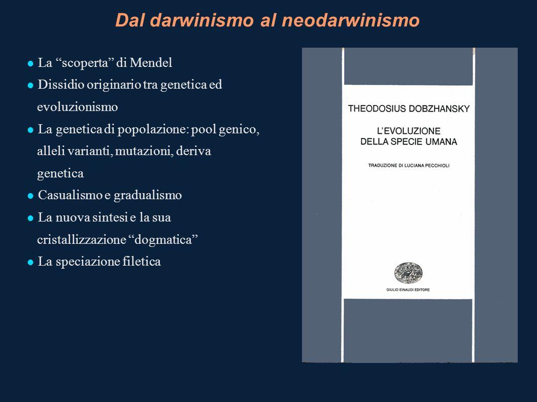 Dal darwinismo al neodarwinismo La scoperta di Mendel Dissidio originario tra genetica ed evoluzionismo La genetica di popolazione: pool genico, allel