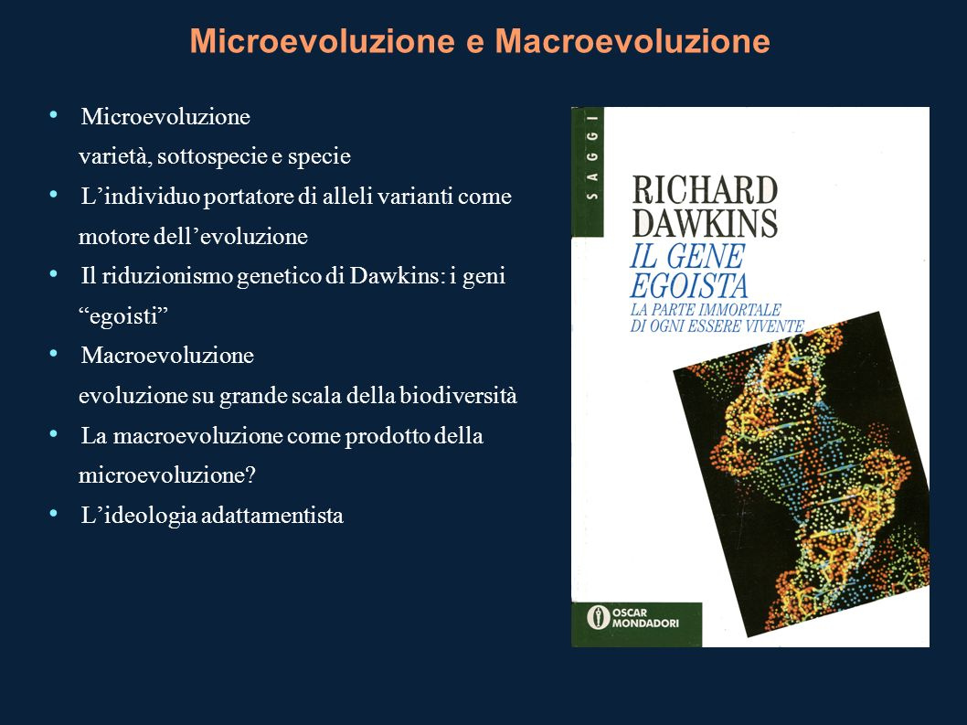 Microevoluzione e Macroevoluzione Microevoluzione varietà, sottospecie e specie Lindividuo portatore di alleli varianti come motore dellevoluzione Il