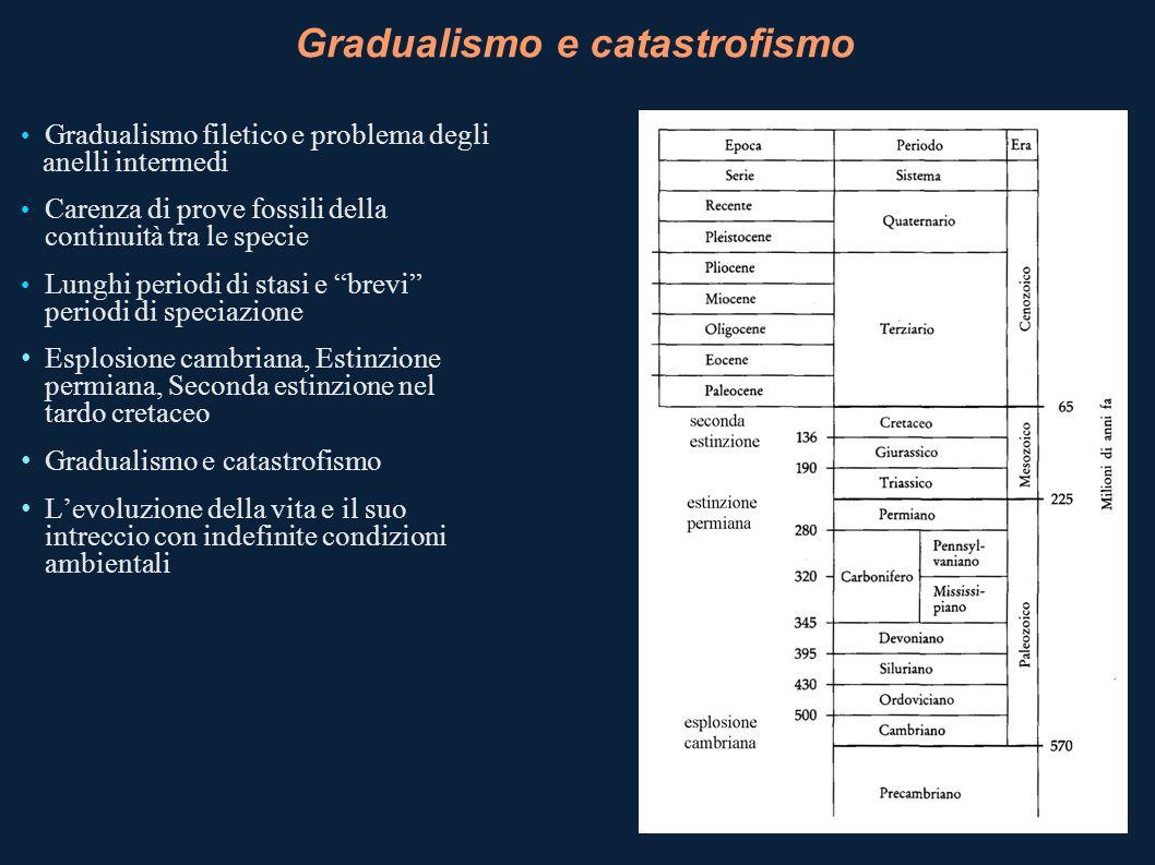 Gradualismo e catastrofismo Gradualismo filetico e problema degli anelli intermedi Carenza di prove fossili della continuità tra le specie Lunghi peri