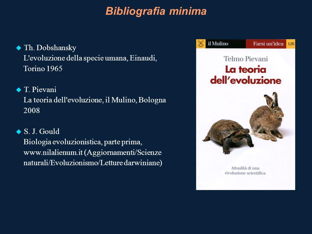Bibliografia minima Th. Dobshansky L'evoluzione della specie umana, Einaudi, Torino 1965 T. Pievani La teoria dell'evoluzione, il Mulino, Bologna 2008