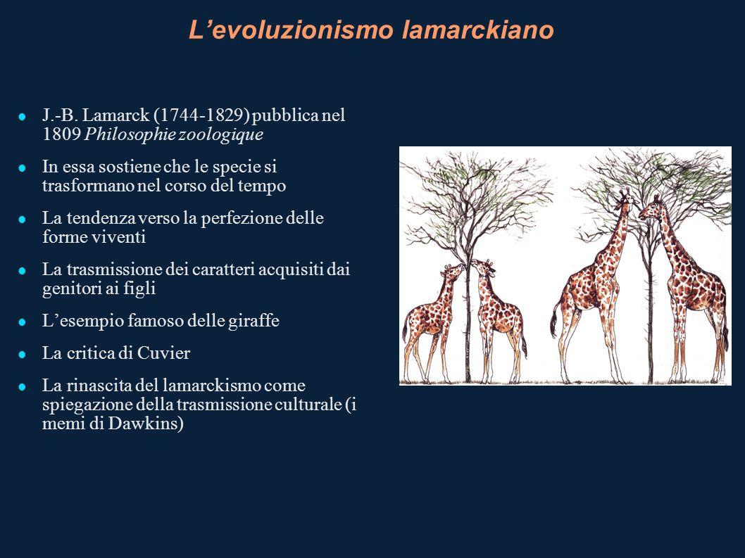 La confessione di Darwin Gradualismo: lenti e impercettibili cambiamenti alla base della selezione Funzionalismo: i cambiamenti morfologici sono selezionati sulla base del loro significato adattivo La natura tende alla perfezione.