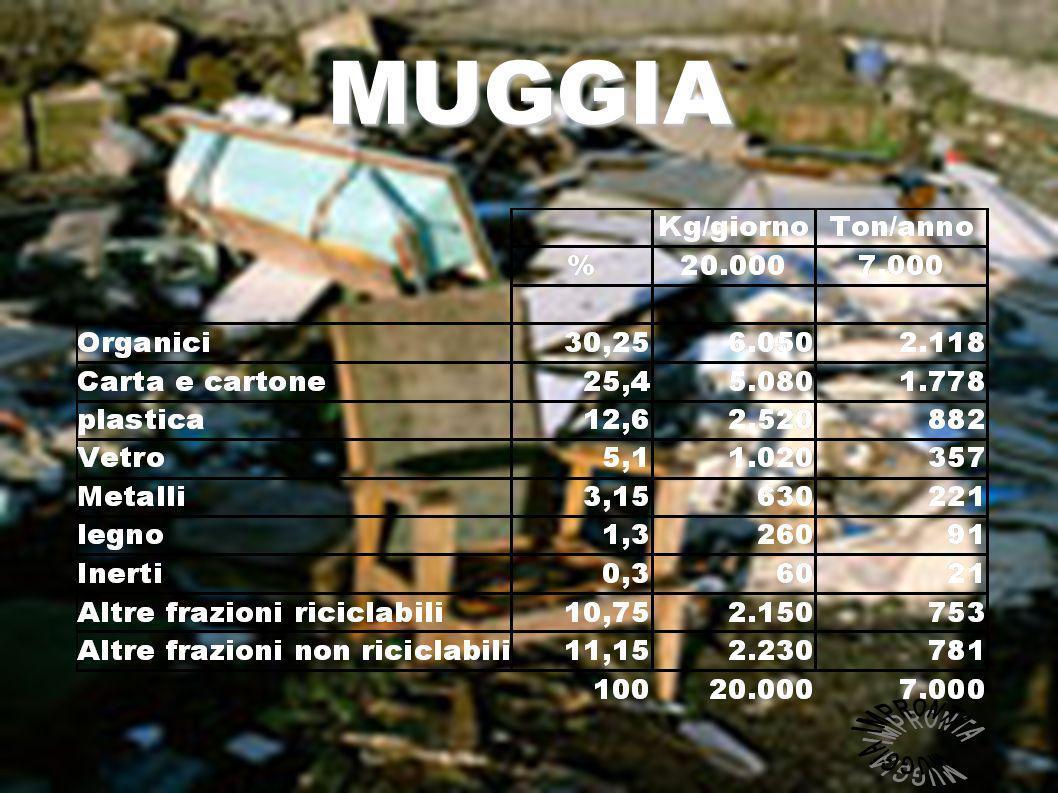 Cioè buttiamo : 1.778 ton di carta cartone 882 ton di plastica 357 ton di vetro 221 ton di metalli 91 ton di legno 2.118 ton di organico