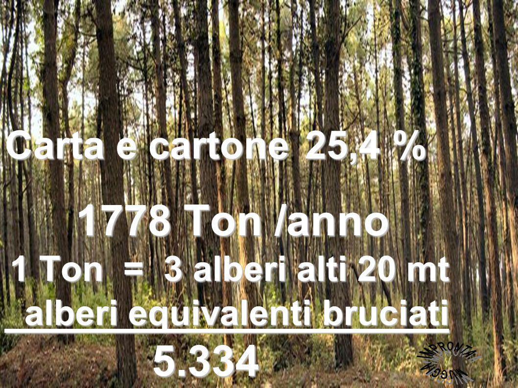 COSA CONSUMIAMO PER PRODURRE CARTA per 1 Ton di cellulosa cellulosa servono 3 alberi di 20 mt.