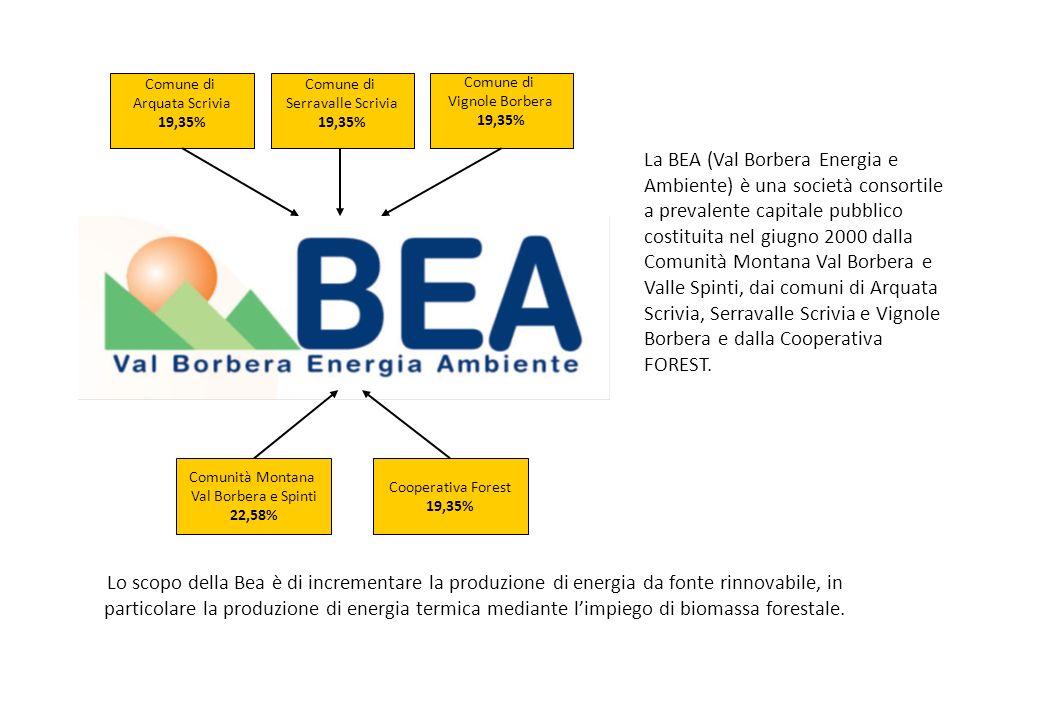 La BEA (Val Borbera Energia e Ambiente) è una società consortile a prevalente capitale pubblico costituita nel giugno 2000 dalla Comunità Montana Val Borbera e Valle Spinti, dai comuni di Arquata Scrivia, Serravalle Scrivia e Vignole Borbera e dalla Cooperativa FOREST.