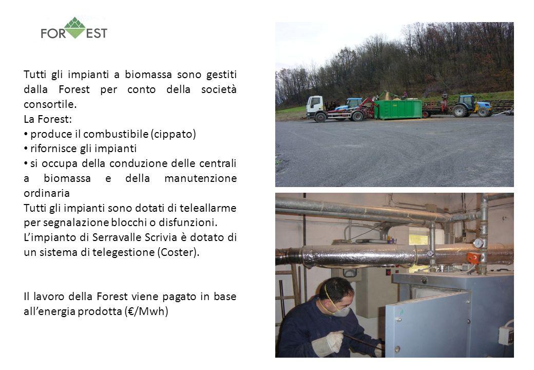 Tutti gli impianti a biomassa sono gestiti dalla Forest per conto della società consortile.