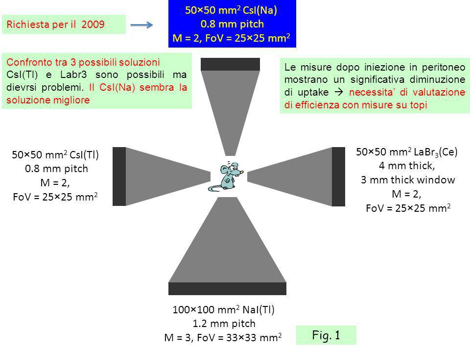 Misure su topi: rivelazione di placche vulnerabili Fig. 11