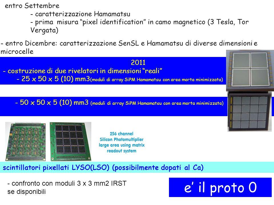 entro Settembre - caratterizzazione Hamamatsu - prima misura pixel identification in camo magnetico (3 Tesla, Tor Vergata) - entro Dicembre: caratterizzazione SenSL e Hamamatsu di diverse dimensioni e microcelle 2011 - costruzione di due rivelatori in dimensioni reali - 25 x 50 x 5 (10) mm3 (moduli di array SiPM Hamamatsu con area morta minimizzata) - 50 x 50 x 5 (10) mm3 (moduli di array SiPM Hamamatsu con area morta minimizzata) scintillatori pixellati LYSO(LSO) (possibilmente dopati al Ca) e il proto 0 - confronto con moduli 3 x 3 mm2 IRST se disponibili
