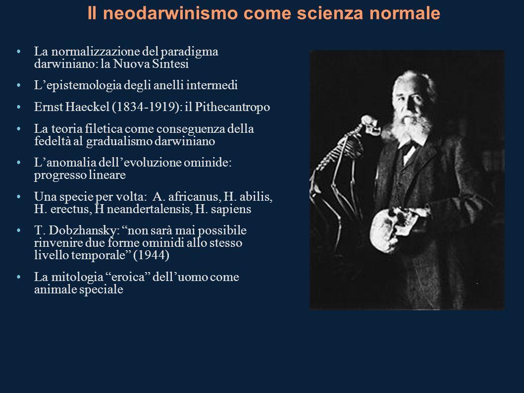 Il neodarwinismo come scienza normale La normalizzazione del paradigma darwiniano: la Nuova Sintesi Lepistemologia degli anelli intermedi Ernst Haecke