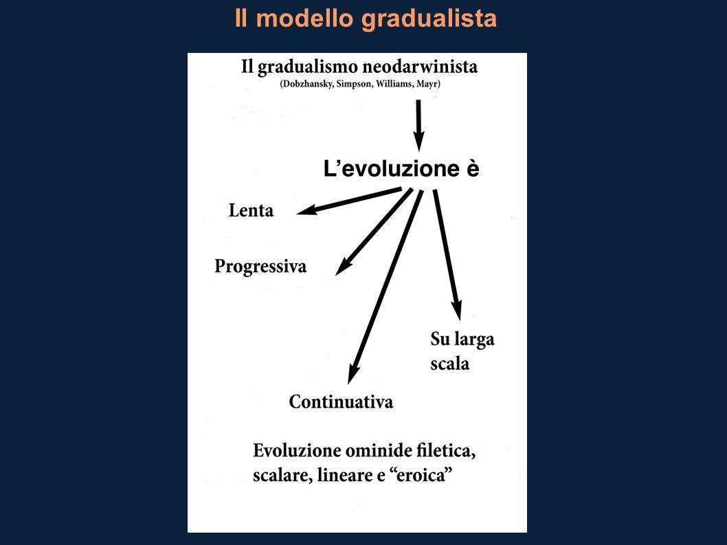 Il modello gradualista