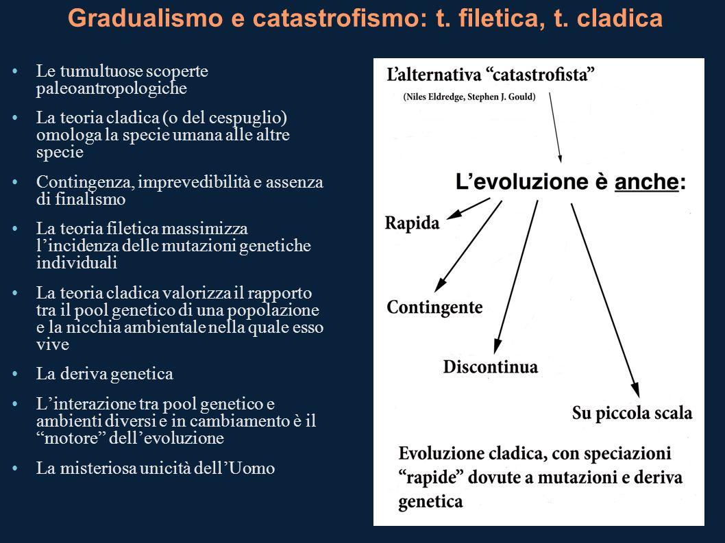Gradualismo e catastrofismo: t. filetica, t. cladica Le tumultuose scoperte paleoantropologiche La teoria cladica (o del cespuglio) omologa la specie