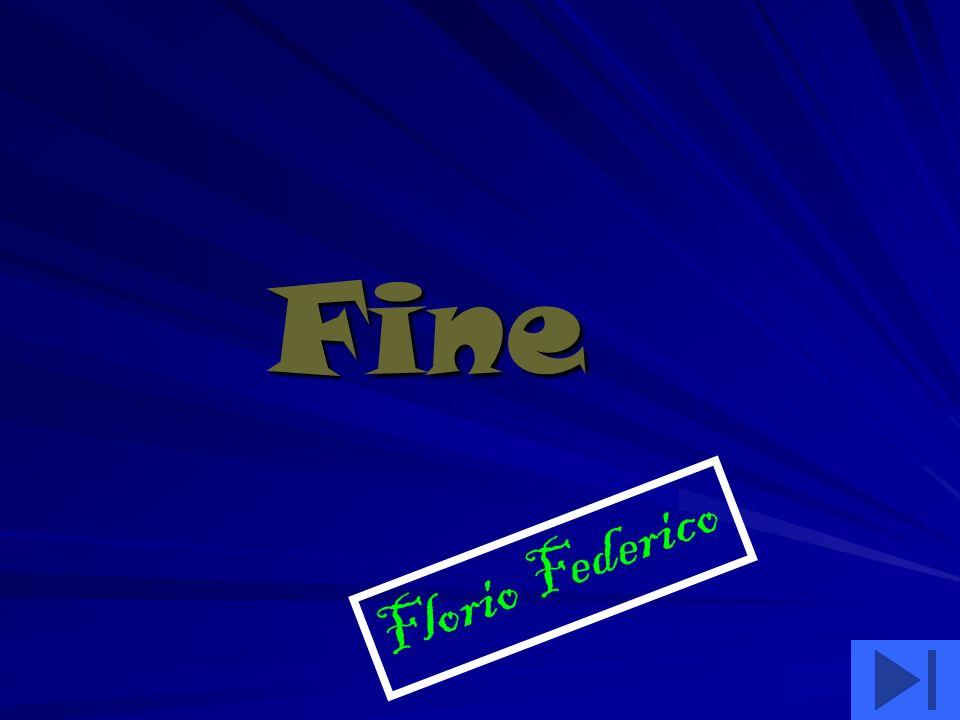 Fine Fine Florio Federico