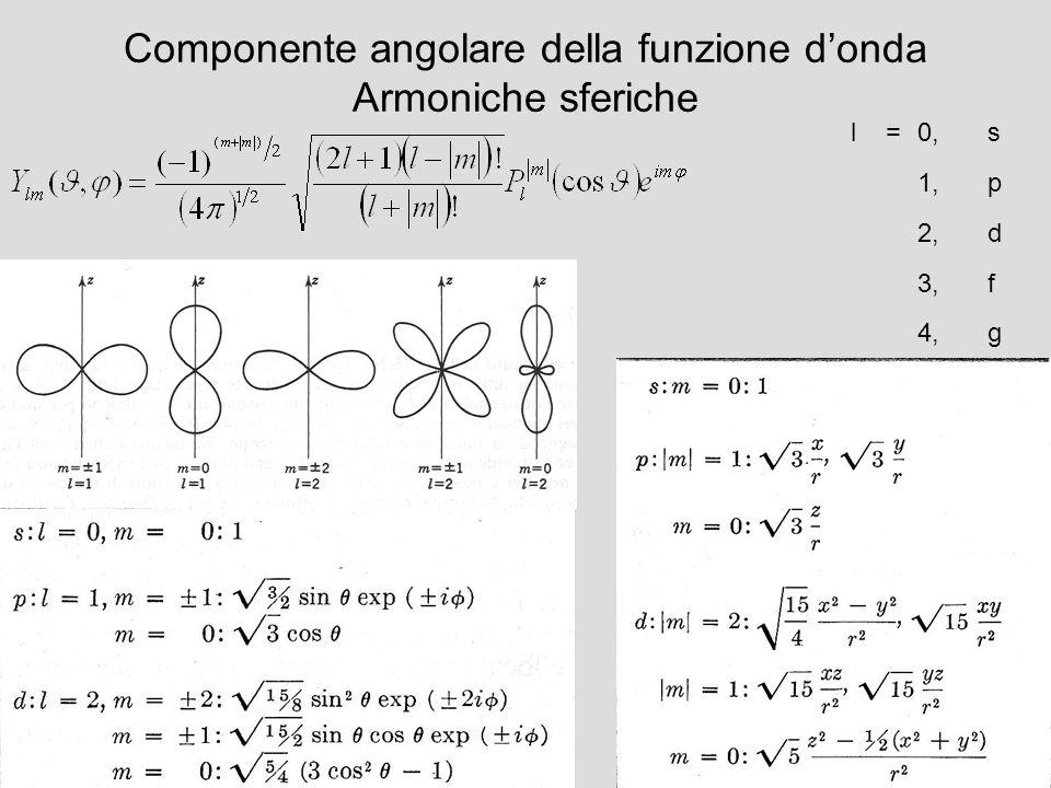 Componente angolare della funzione donda Armoniche sferiche l=0,s 1,p 2,d 3,f 4,g