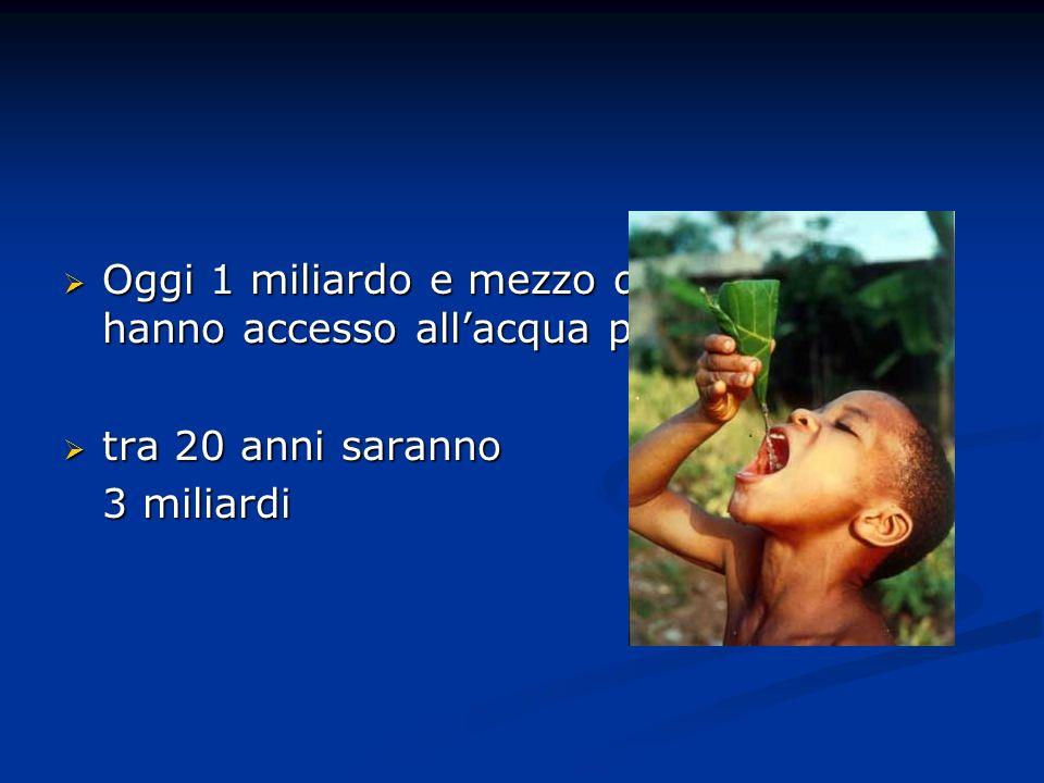 Oggi 1 miliardo e mezzo di persone non hanno accesso allacqua potabile Oggi 1 miliardo e mezzo di persone non hanno accesso allacqua potabile tra 20 anni saranno tra 20 anni saranno 3 miliardi