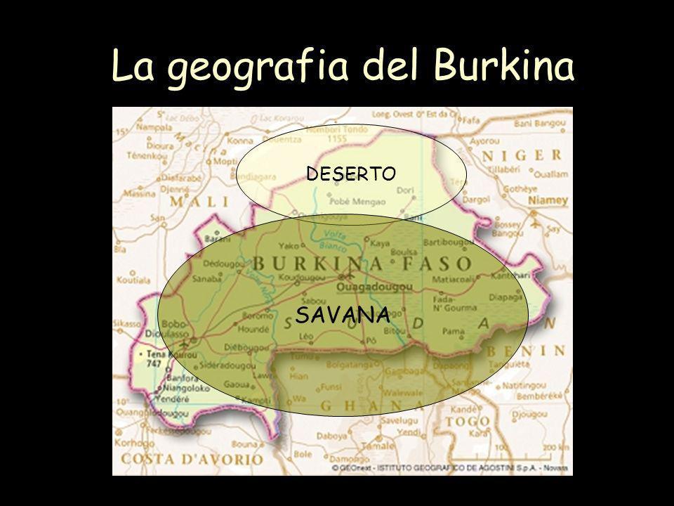 La geografia del Burkina DESERTO SAVANA