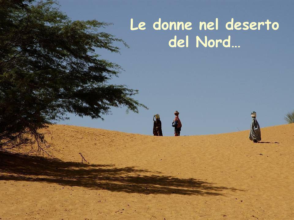 Le donne nel deserto del Nord…