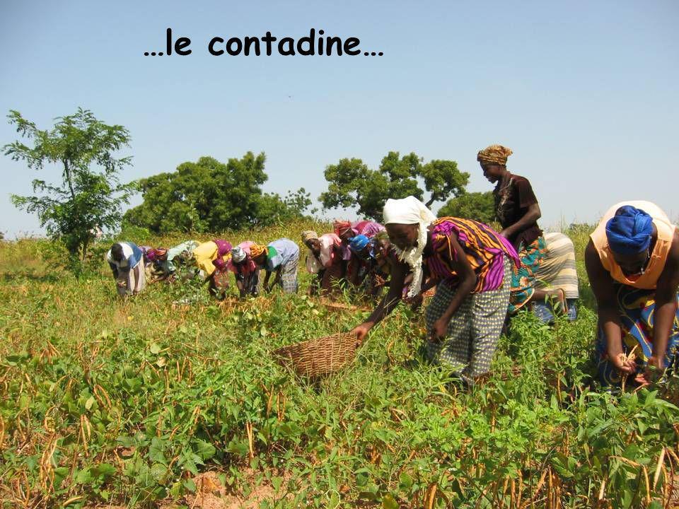 …le contadine…