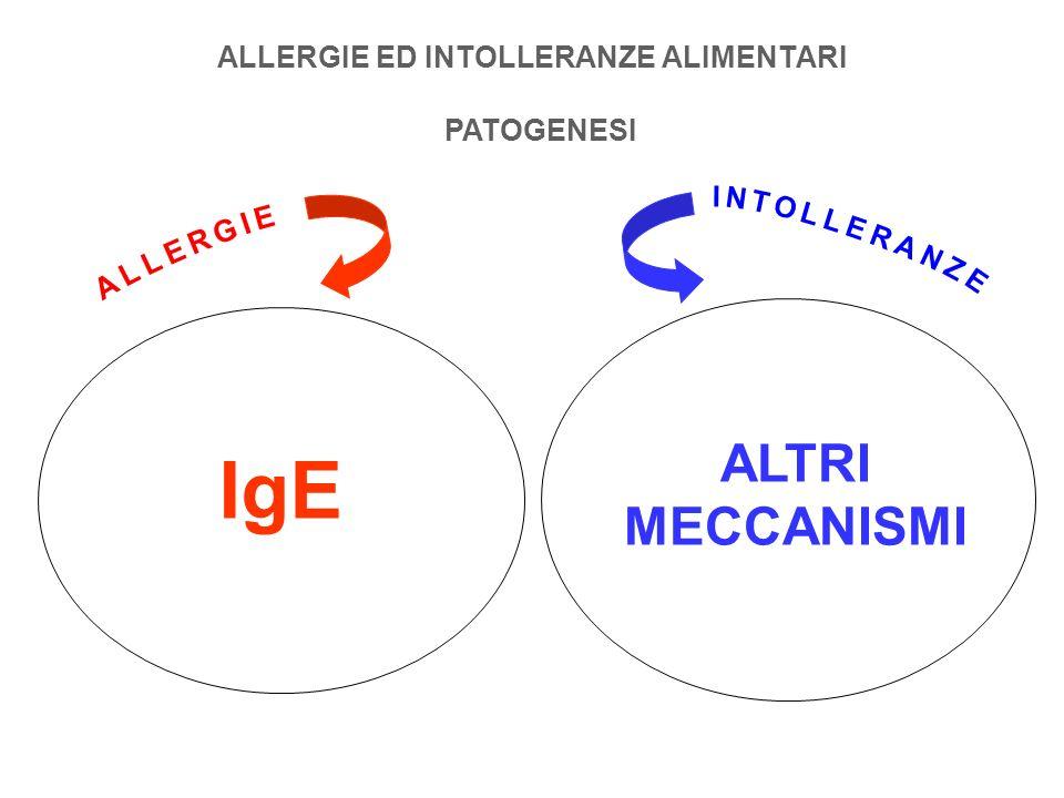 ALLERGIE ED INTOLLERANZE ALIMENTARI PATOGENESI IgE ALTRI MECCANISMI