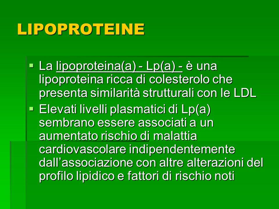 LIPOPROTEINE La lipoproteina(a) - Lp(a) - è una lipoproteina ricca di colesterolo che presenta similarità strutturali con le LDL La lipoproteina(a) -