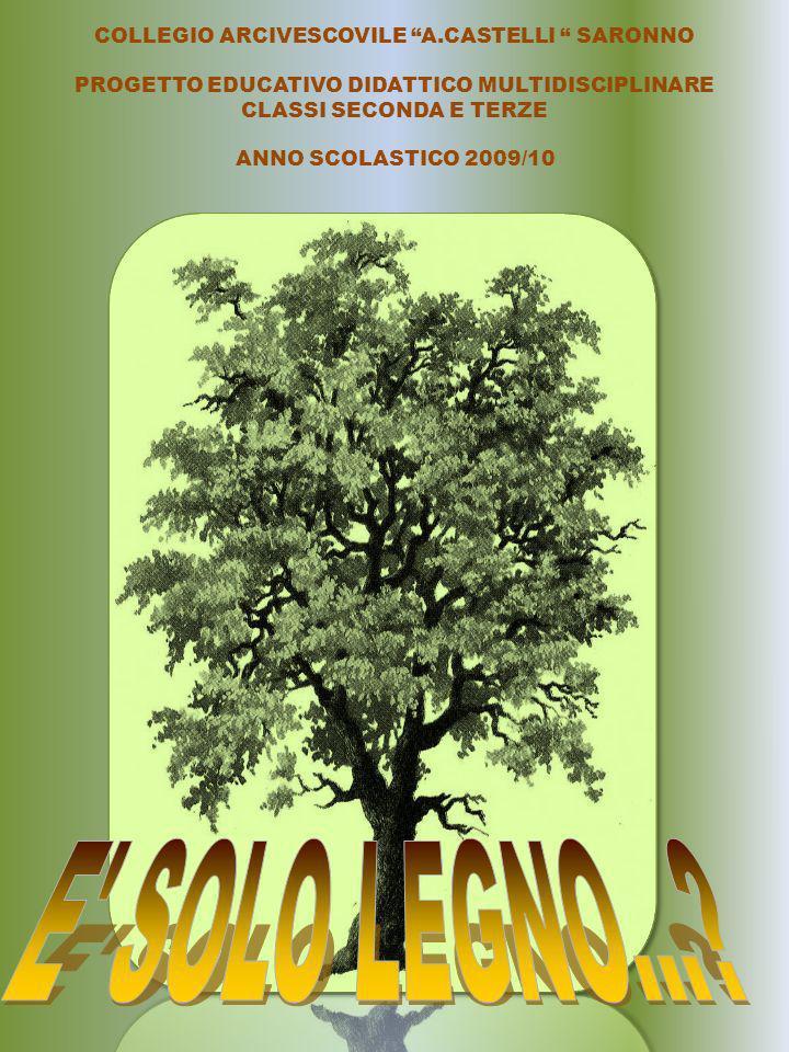 COLLEGIO ARCIVESCOVILE A.CASTELLI SARONNO PROGETTO EDUCATIVO DIDATTICO MULTIDISCIPLINARE CLASSI SECONDA E TERZE ANNO SCOLASTICO 2009/10