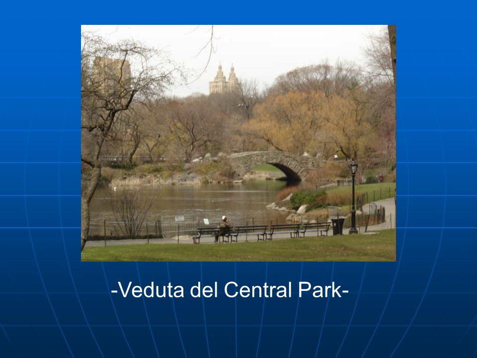 -Veduta del Central Park-