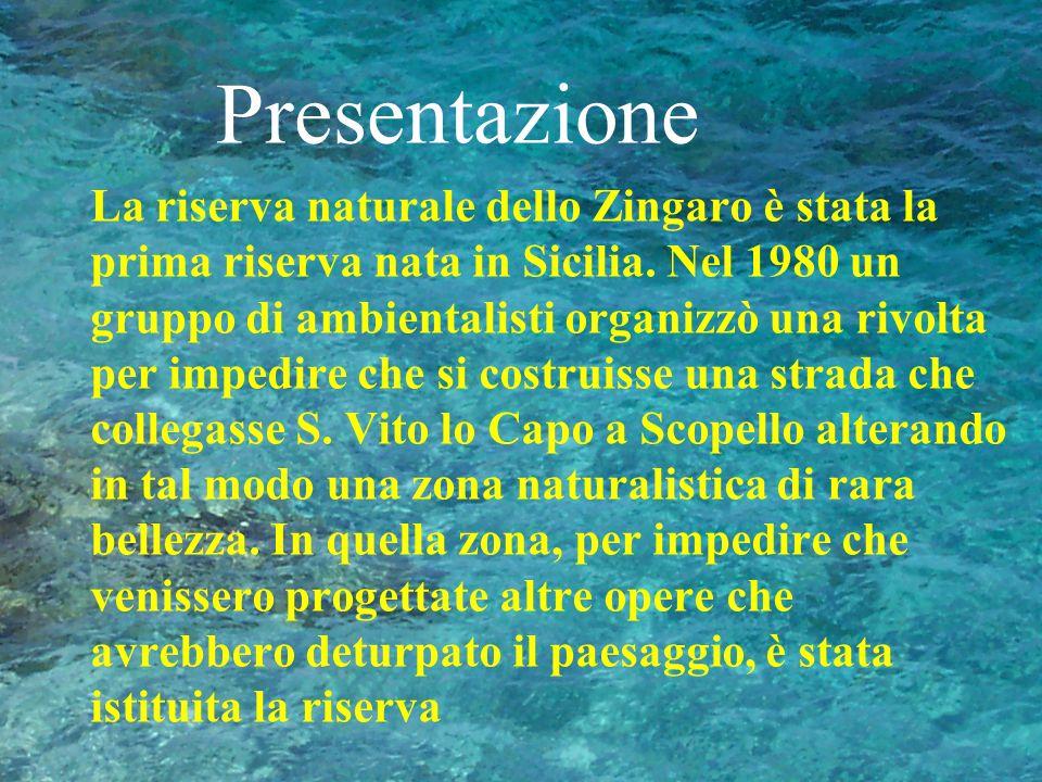 Presentazione La riserva naturale dello Zingaro è stata la prima riserva nata in Sicilia. Nel 1980 un gruppo di ambientalisti organizzò una rivolta pe