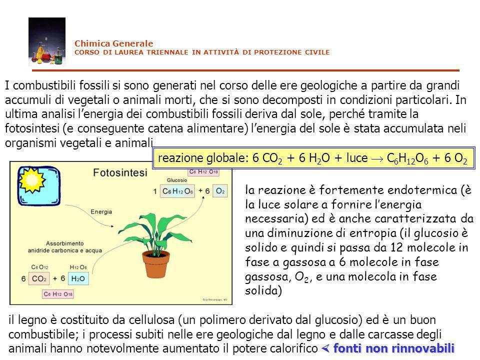 I combustibili fossili si sono generati nel corso delle ere geologiche a partire da grandi accumuli di vegetali o animali morti, che si sono decompost
