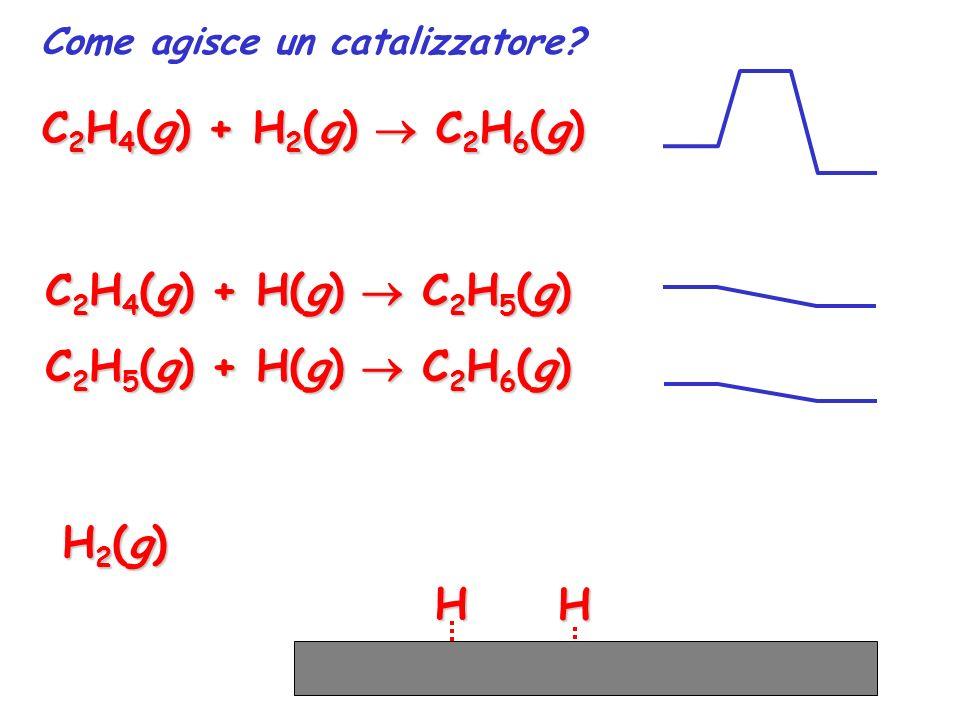 HH Come agisce un catalizzatore? C 2 H 4 (g) + H 2 (g) C 2 H 6 (g) C 2 H 4 (g) + H(g) C 2 H 5 (g) C 2 H 5 (g) + H(g) C 2 H 6 (g) H2(g)H2(g)H2(g)H2(g)