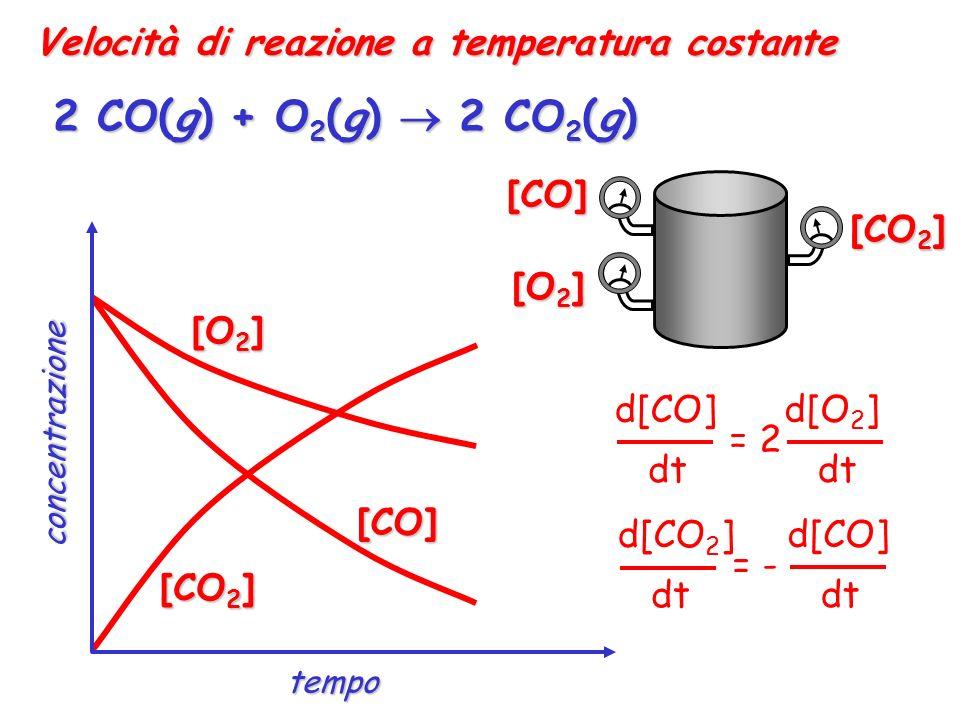 Velocità di reazione a temperatura costante 2 CO(g) + O 2 (g) 2 CO 2 (g) [CO] [O 2 ] [CO 2 ] [O 2 ] [CO] [CO 2 ] d[O 2 ] dt d[CO] dt = 2 d[CO 2 ] dt d