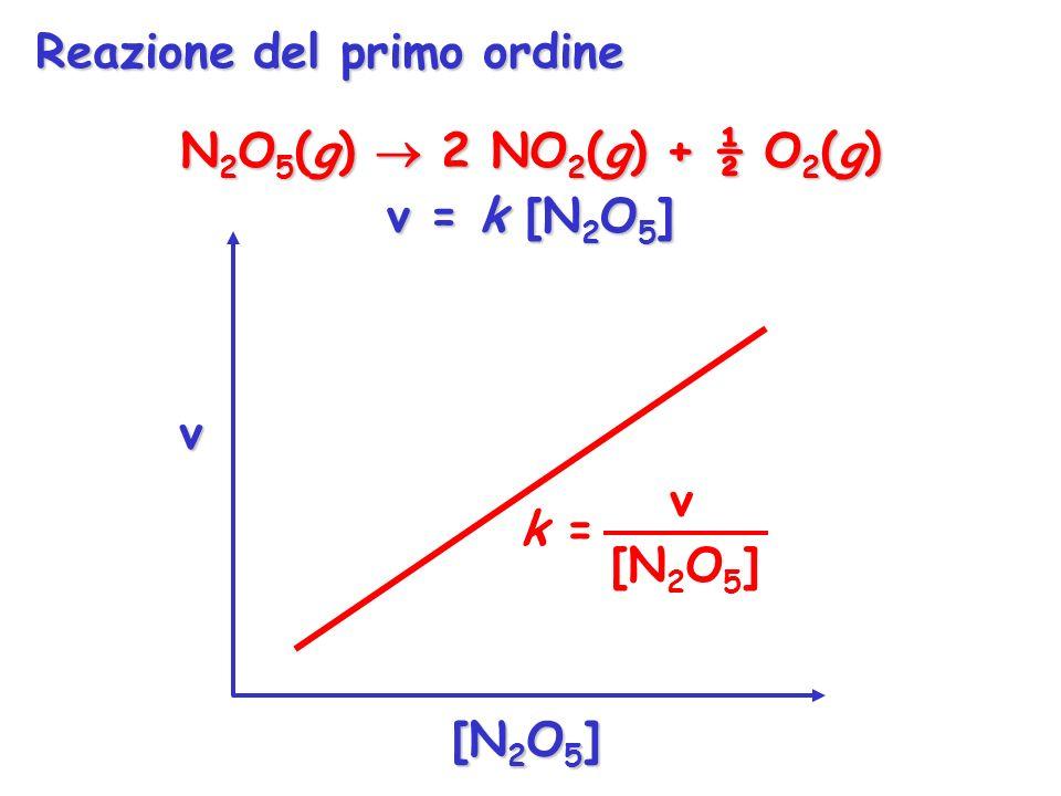 N 2 O 5 (g) 2 NO 2 (g) + ½ O 2 (g) v = k [N 2 O 5 ] v [N 2 O 5 ] v k = [N 2 O 5 ] Reazione del primo ordine