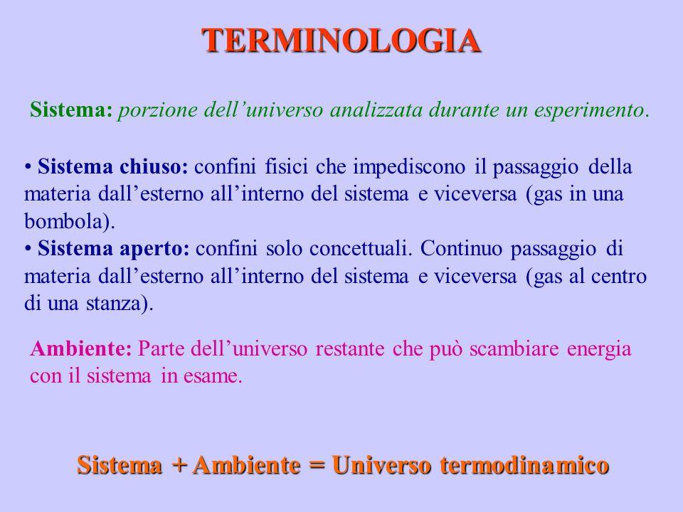 TERMINOLOGIA Sistema: porzione delluniverso analizzata durante un esperimento. Sistema chiuso: confini fisici che impediscono il passaggio della mater
