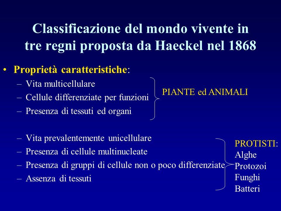 Classificazione del mondo vivente in tre regni proposta da Haeckel nel 1868 Proprietà caratteristiche: –Vita multicellulare –Cellule differenziate per