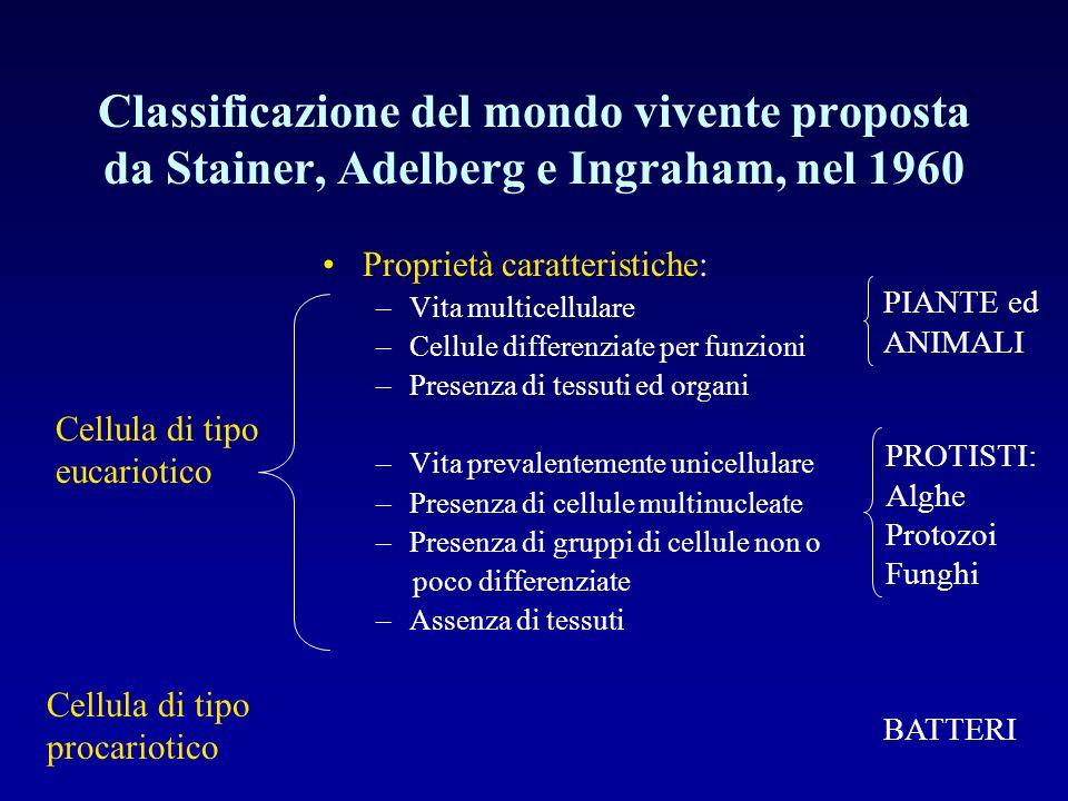 Classificazione del mondo vivente proposta da Stainer, Adelberg e Ingraham, nel 1960 Proprietà caratteristiche: –Vita multicellulare –Cellule differen