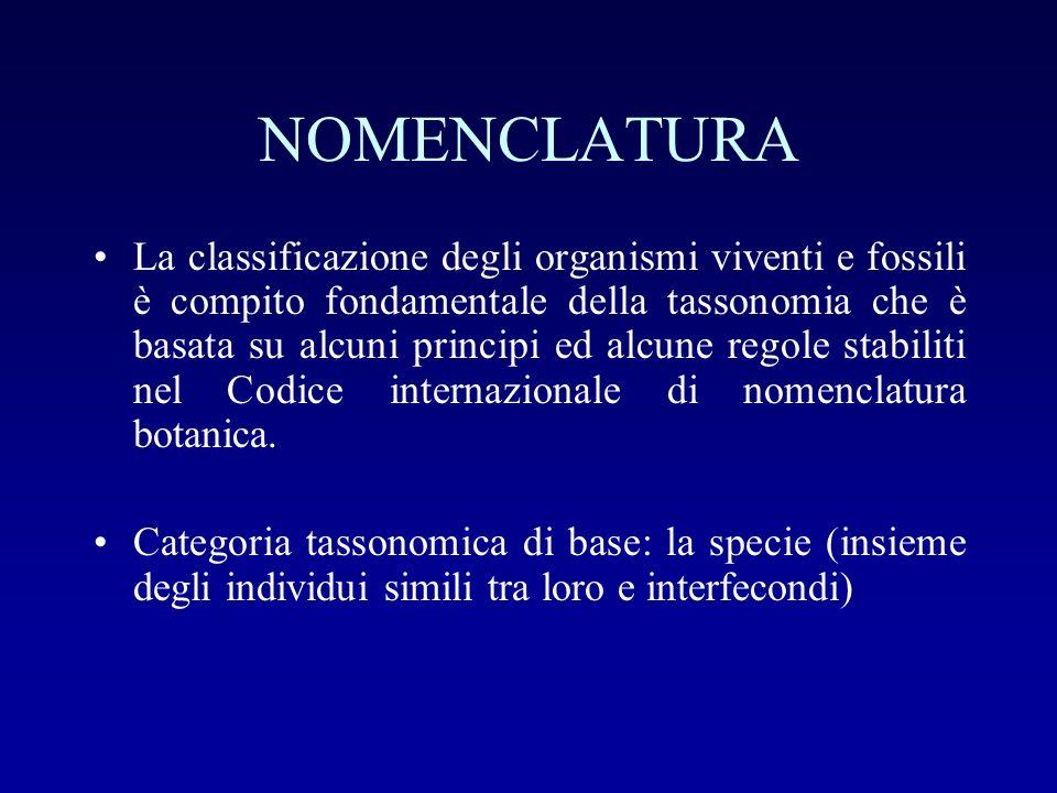 NOMENCLATURA La classificazione degli organismi viventi e fossili è compito fondamentale della tassonomia che è basata su alcuni principi ed alcune re