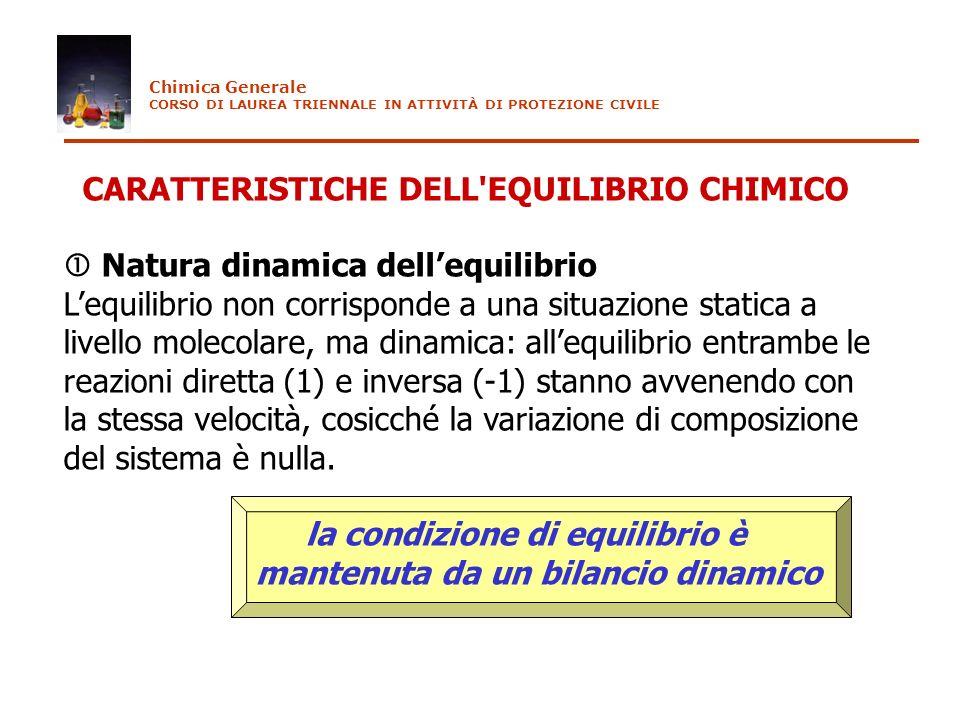 CARATTERISTICHE DELL'EQUILIBRIO CHIMICO Natura dinamica dellequilibrio Lequilibrio non corrisponde a una situazione statica a livello molecolare, ma d