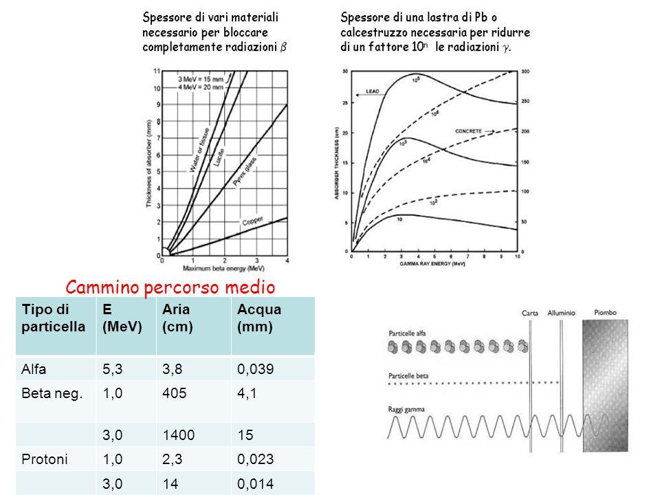 Tipo di particella E (MeV) Aria (cm) Acqua (mm) Alfa5,33,80,039 Beta neg.1,04054,1 3,0140015 Protoni1,02,30,023 3,0140,014 Cammino percorso medio