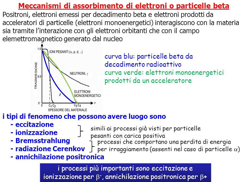 Meccanismi di assorbimento di elettroni o particelle beta Positroni, elettroni emessi per decadimento beta e elettroni prodotti da acceleratori di par