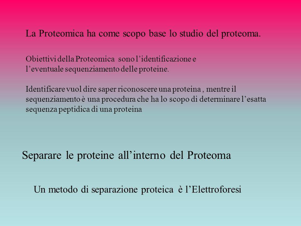 La Proteomica ha come scopo base lo studio del proteoma. Identificare vuol dire saper riconoscere una proteina, mentre il sequenziamento è una procedu